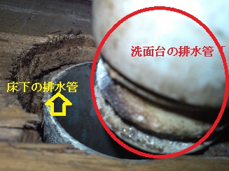よく見ると、床下の管に洗面台の配水管がつながっていない